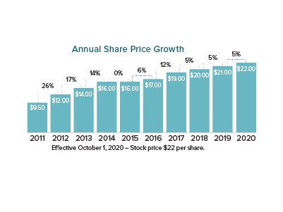 Chart of 2020 Share Price Growth